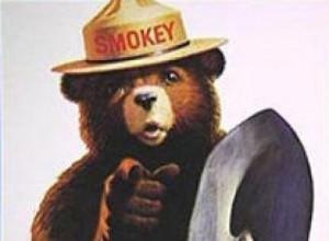 Ad-icon-battle-Smokey-Bear-vs-perky-Flo-GQCBUS1-x-large